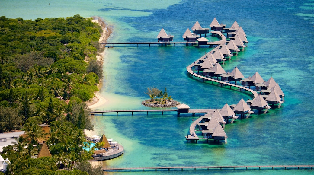 Ilot Maitre which includes general coastal views, coral and a luxury hotel or resort