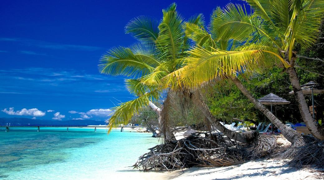 Nouméa welches beinhaltet Strand