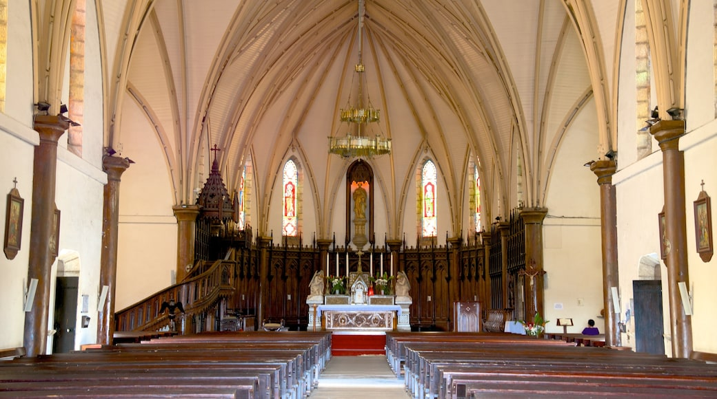 Noumea Cathedral welches beinhaltet Kirche oder Kathedrale und Innenansichten