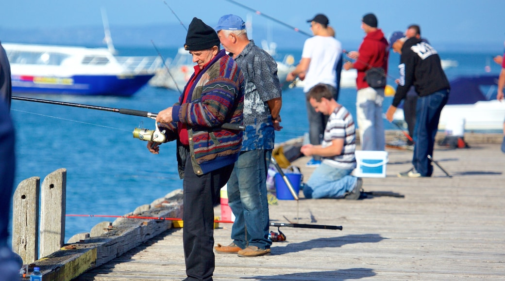 Portsea Pier featuring fishing as well as a large group of people