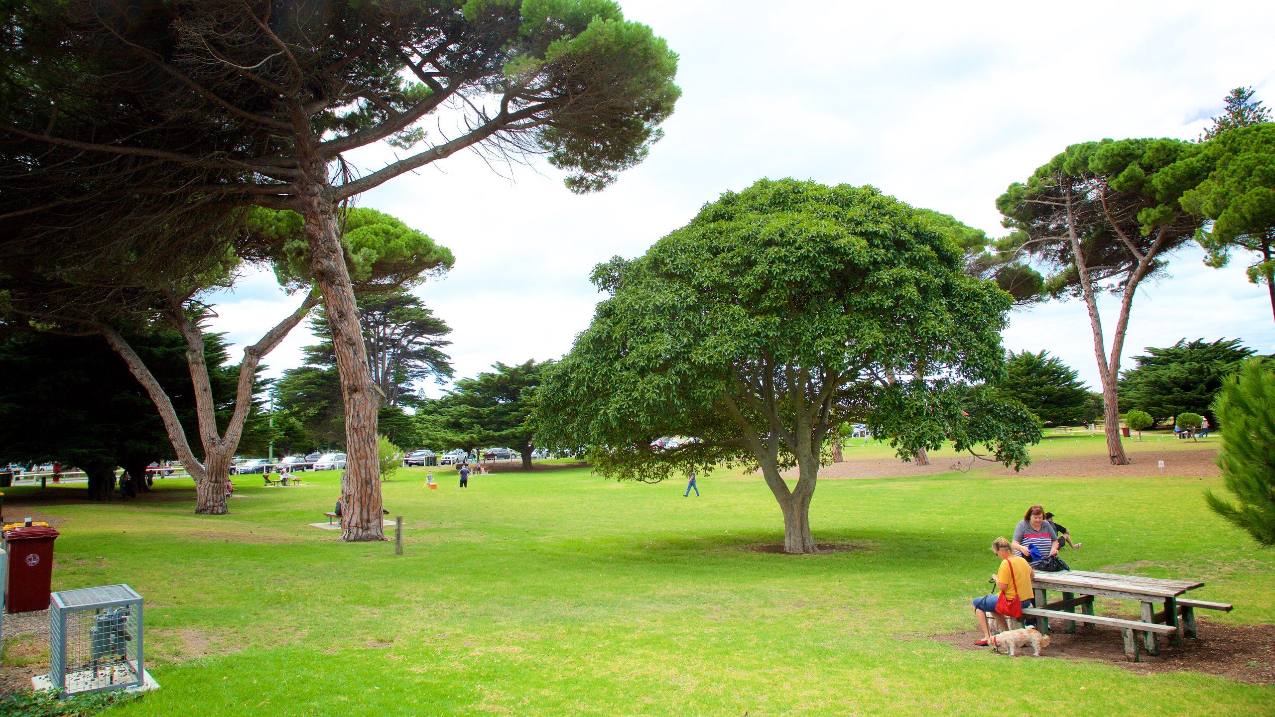 Greater Geelong City, Victoria, Australia