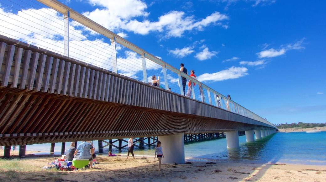Barwon Heads showing a bridge and a sandy beach