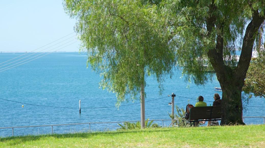 Geelong featuring general coastal views