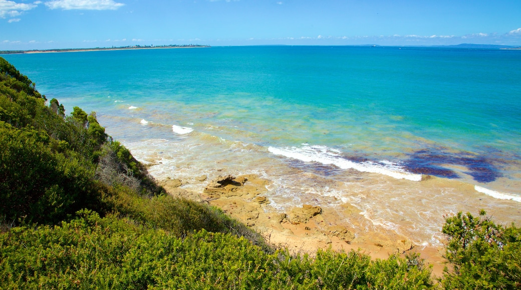 Point Lonsdale which includes rocky coastline