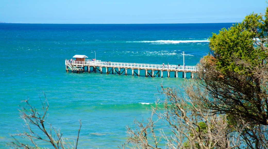 Point Lonsdale which includes general coastal views