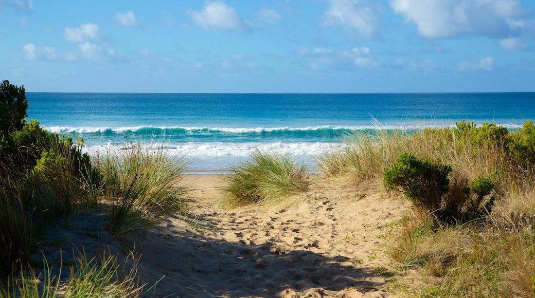 Apollo Bay which includes a beach