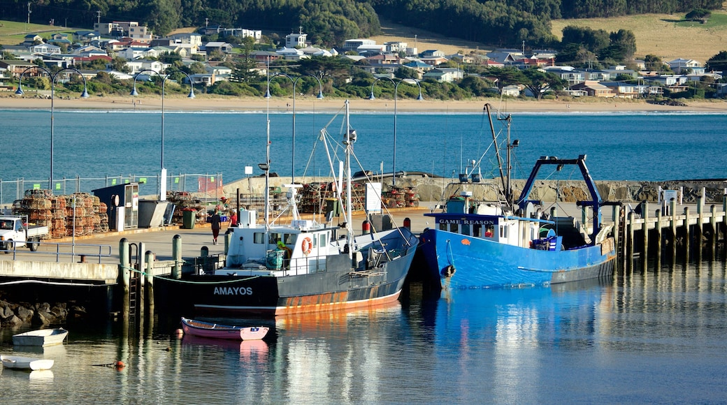 Apollo Bay Harbour showing boating and a marina