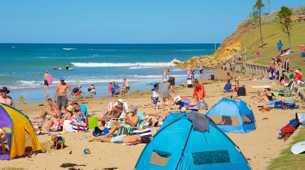 Torquay showing a sandy beach as well as a large group of people