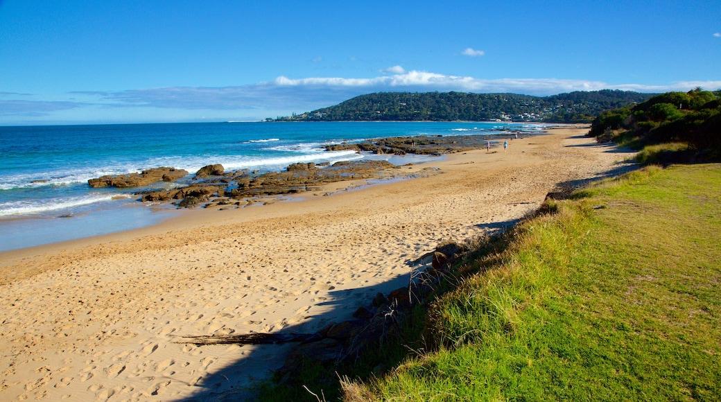 Lorne featuring rugged coastline and a beach