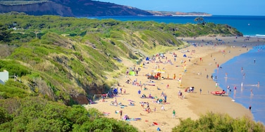 Anglesea featuring a beach and a bay or harbour as well as a large group of people