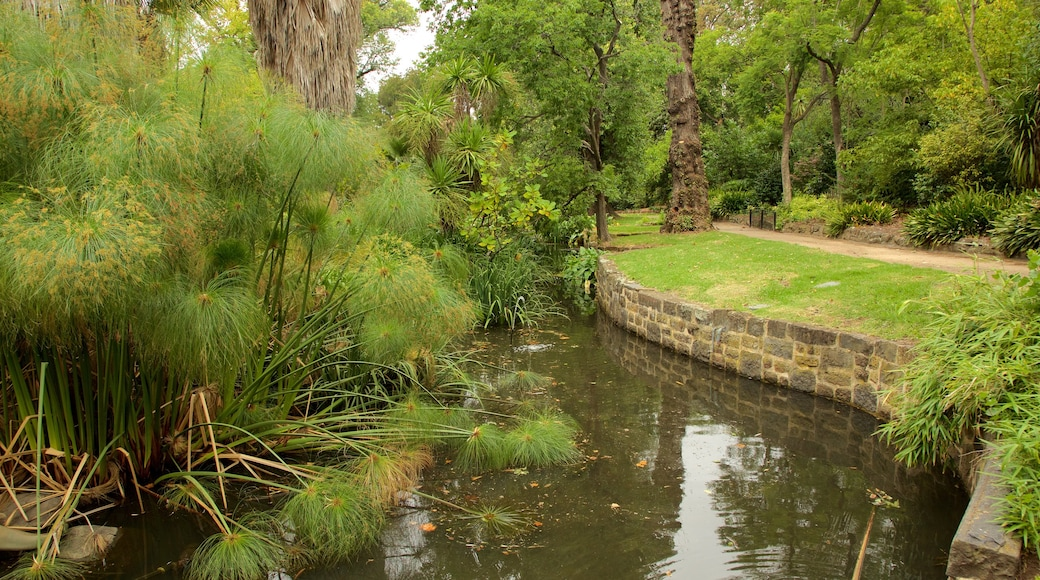 Fitzroy Gardens which includes a park and a river or creek