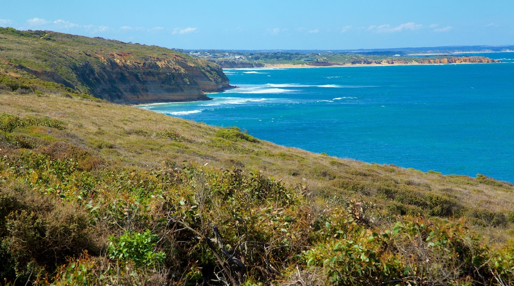 Bell\'s Beach which includes landscape views and rugged coastline