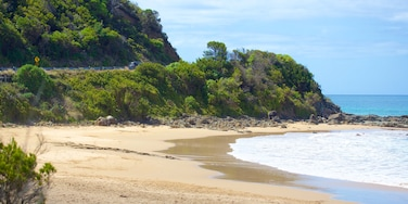 Great Ocean Road which includes a sandy beach