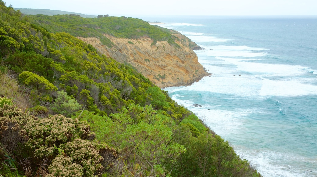 Apollo Bay featuring mountains and rugged coastline