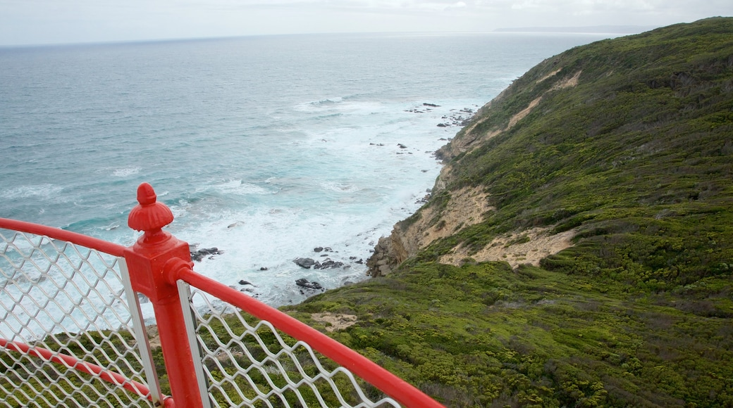 Apollo Bay showing views and rugged coastline