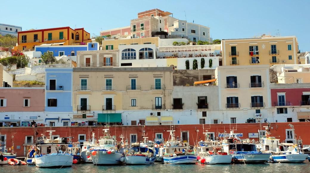 Ponza inclusief algemene kustgezichten, een kuststadje en varen