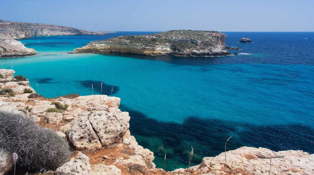 Lampedusa showing island images, rugged coastline and a gorge or canyon