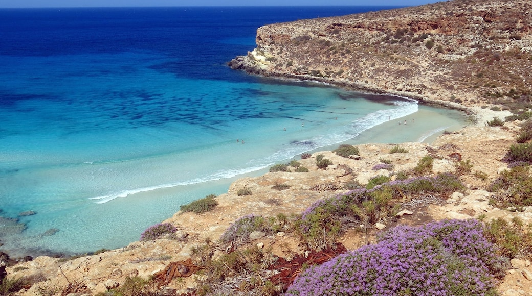 Lampedusa which includes rugged coastline, a bay or harbor and general coastal views