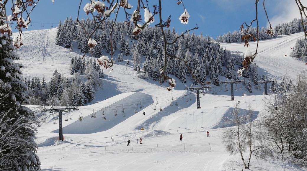 Trient das einen Schnee, Landschaften und Skifahren