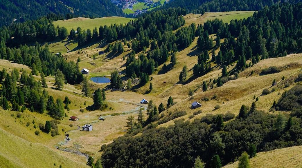 Canazei welches beinhaltet ruhige Szenerie und Landschaften