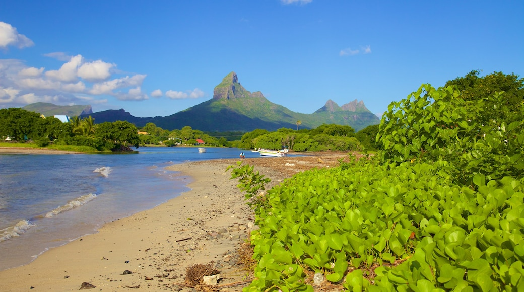 Tamarin featuring a beach and mountains
