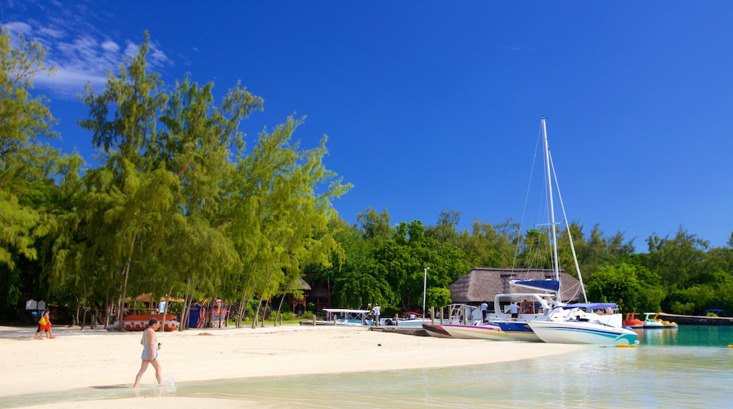Ile aux Cerfs Beach featuring boating, tropical scenes and a sandy beach