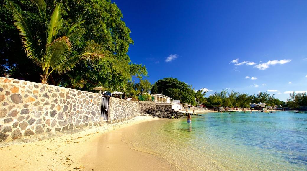 Mauritius featuring a sandy beach