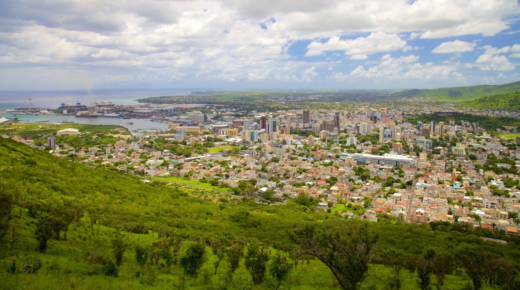 Mauritius showing a city and landscape views