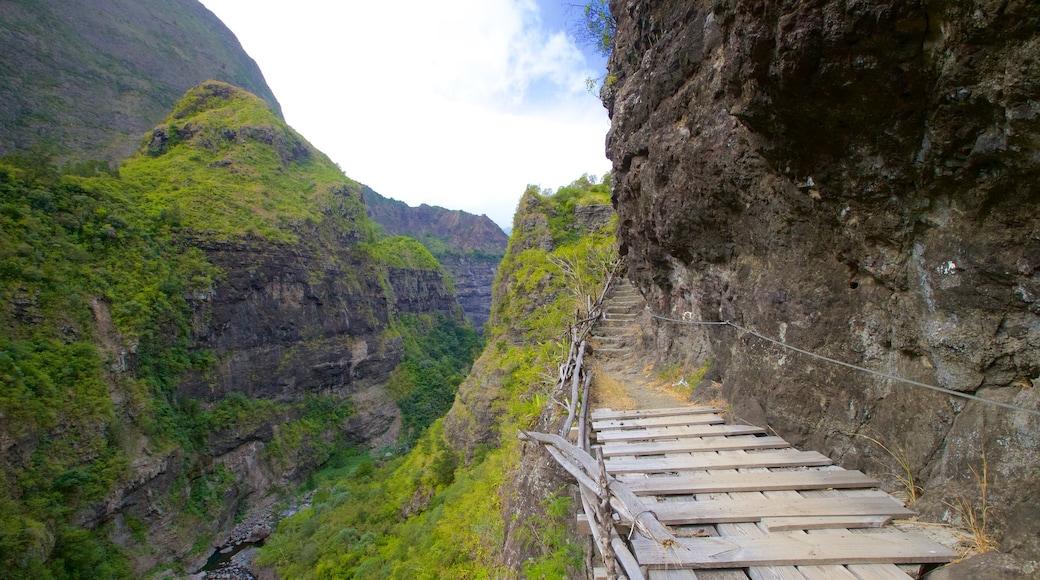 La Réunion montrant gorge ou canyon