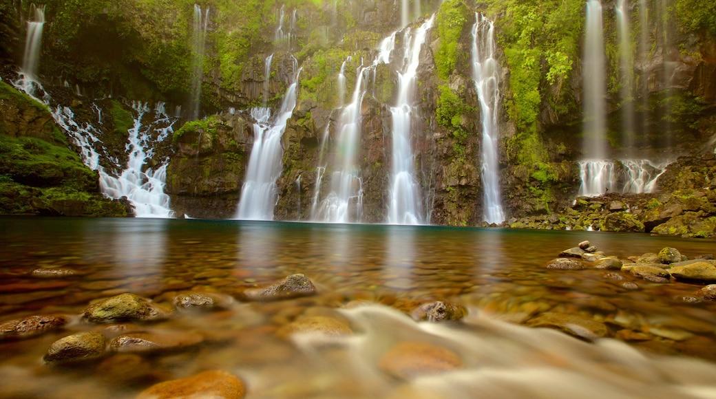 La Réunion montrant lac ou étang et chute d\'eau