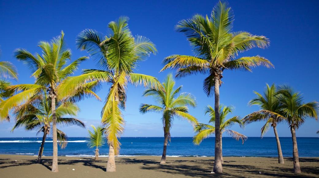 l\'Etang-Sale les Bains showing a sandy beach