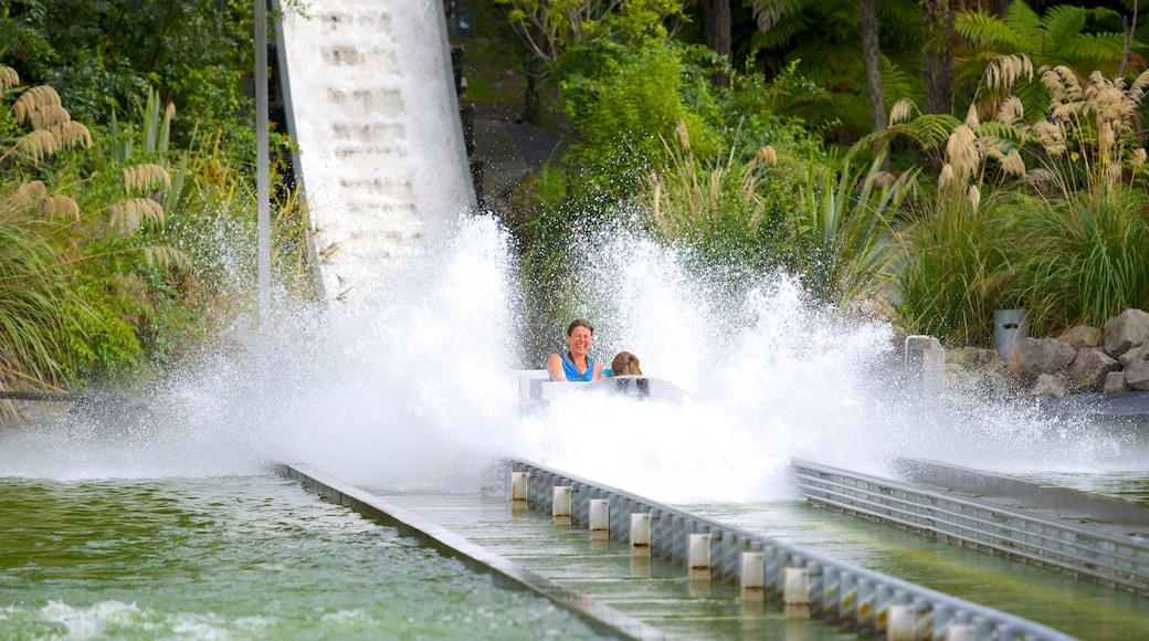 Rainbow Springs Kiwi Wildlife Park showing rides as well as a small group of people