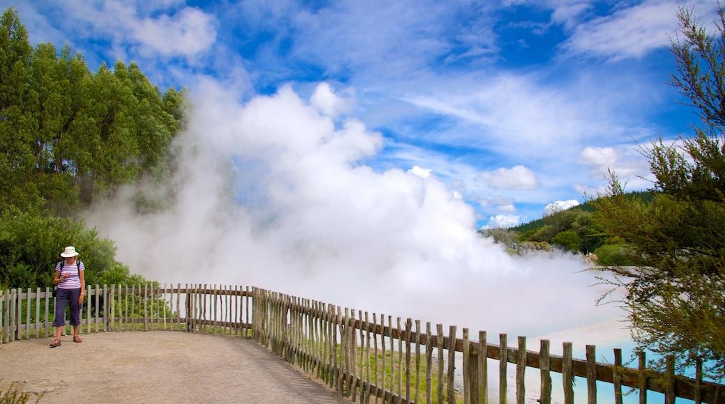 Wairakei featuring mist or fog as well as an individual female