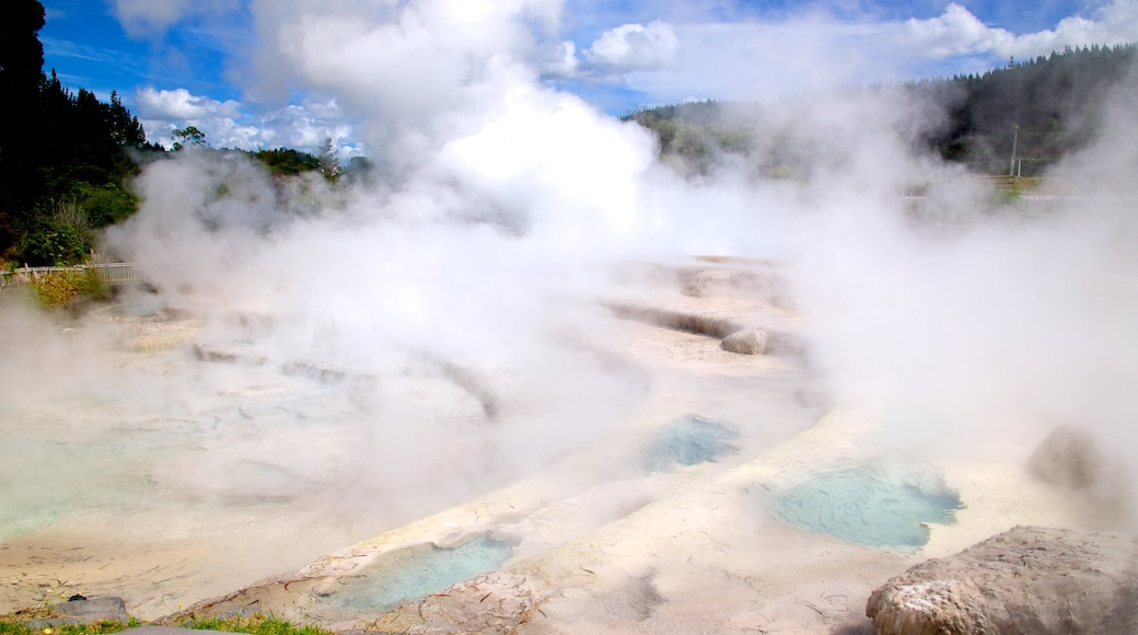 Wairakei featuring a hot spring and mist or fog
