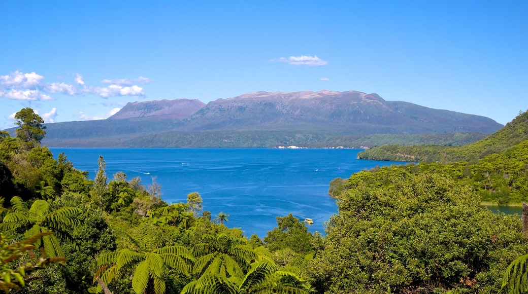Lake Tarawera featuring landscape views and a lake or waterhole