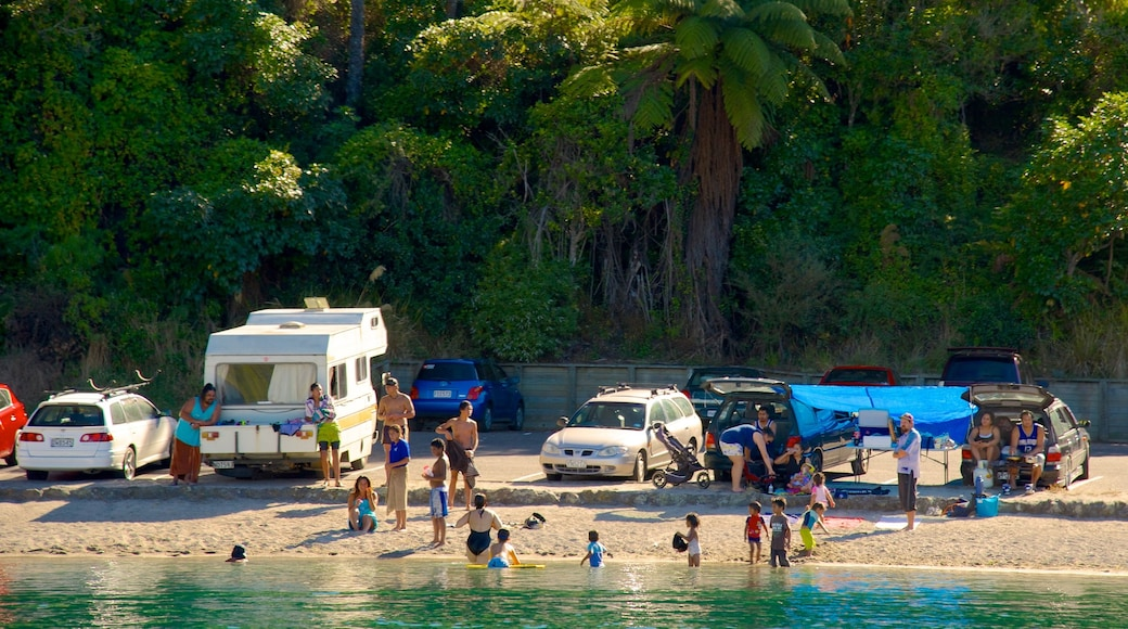 Lake Tarawera which includes a sandy beach as well as a small group of people