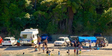 Lake Tarawera featuring a beach as well as a small group of people