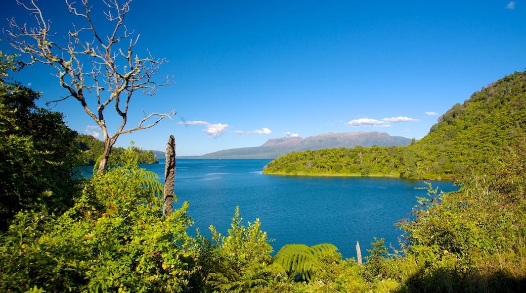 Lake Tikitapu featuring landscape views and a lake or waterhole