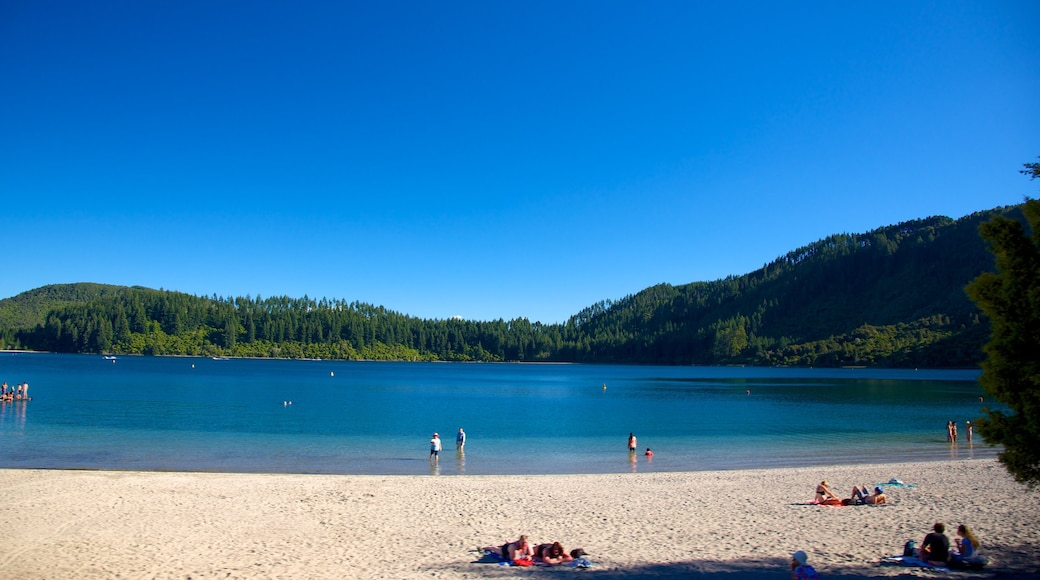 Lake Tikitapu featuring a sandy beach and landscape views