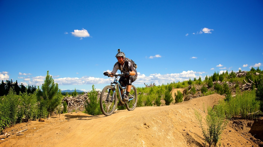 Redwoods Whakarewarewa Forest which includes mountain biking as well as an individual male