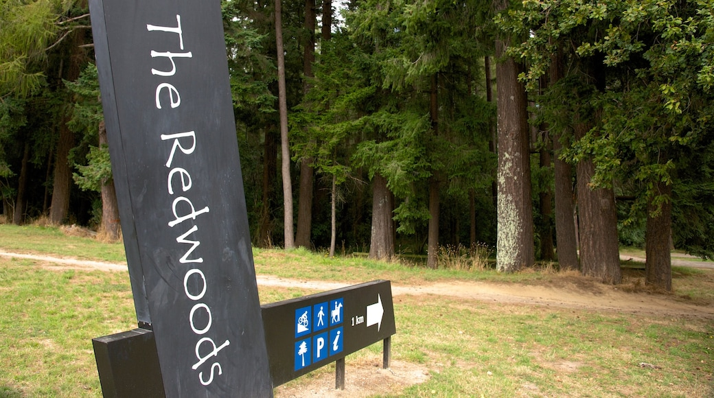 Redwoods Whakarewarewa Forest featuring signage and forest scenes