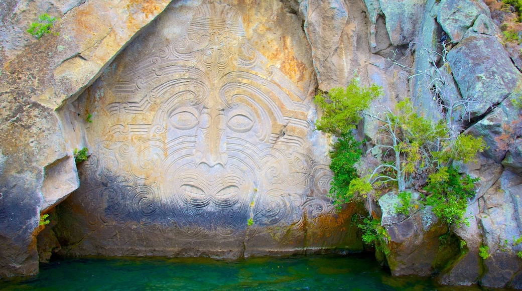 Taupo featuring indigenous culture and art