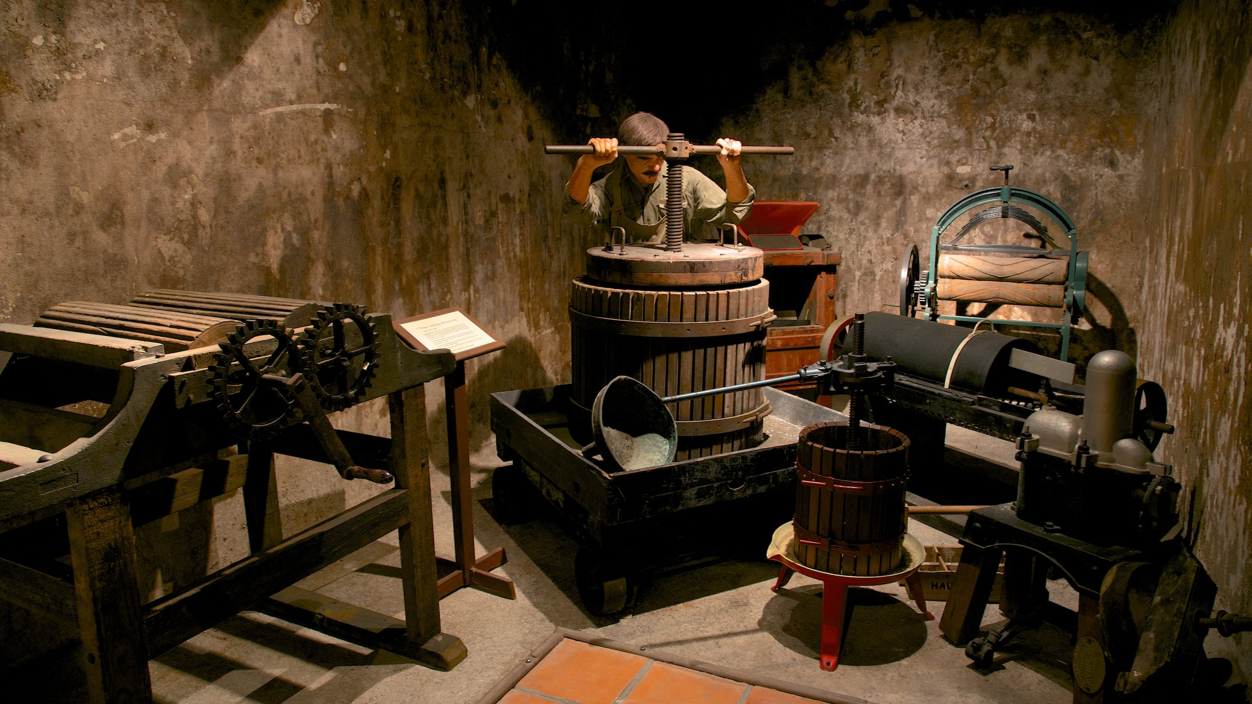 Delve into the history of winemaking and indulge in some fine local food and an assortment of delicious reds at this Hawke's Bay winery.