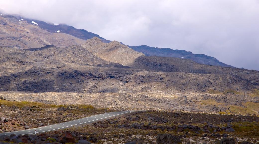 Turangi showing mountains