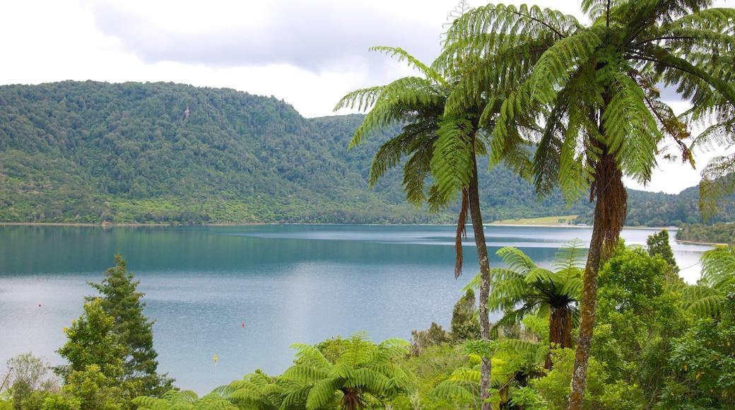 Rotorua showing a lake or waterhole