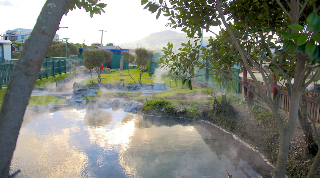 Rotorua showing a park and a hot spring