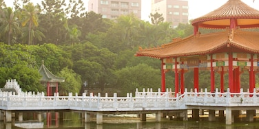 Tainan Park showing a lake or waterhole and a garden