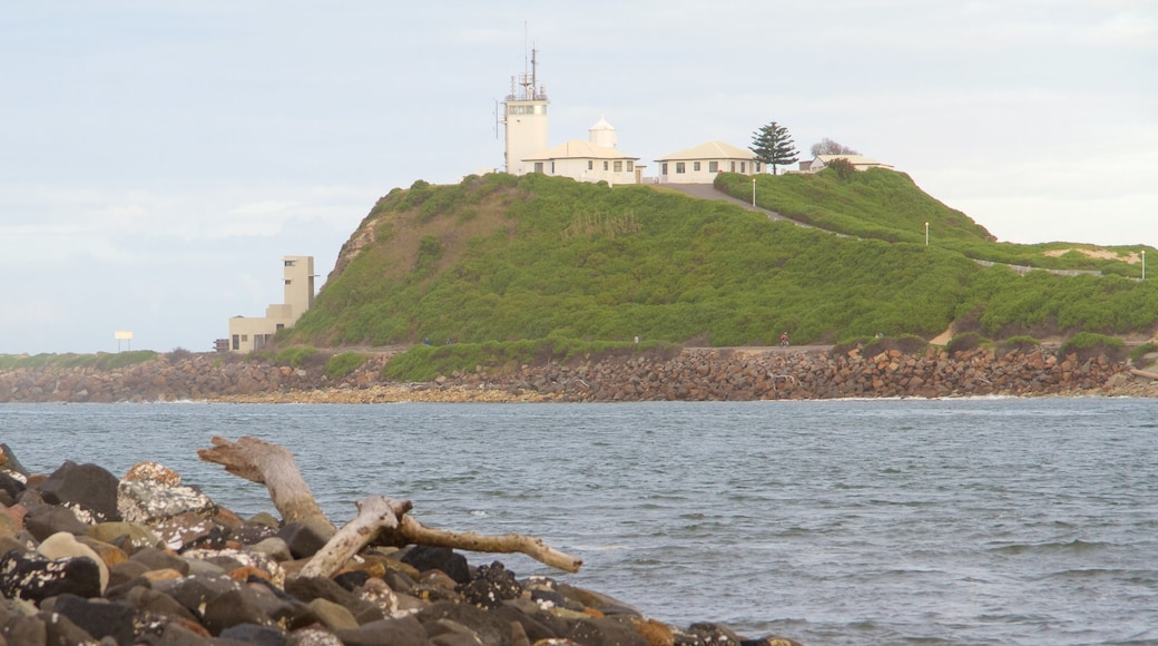 Newcastle which includes general coastal views and a lighthouse