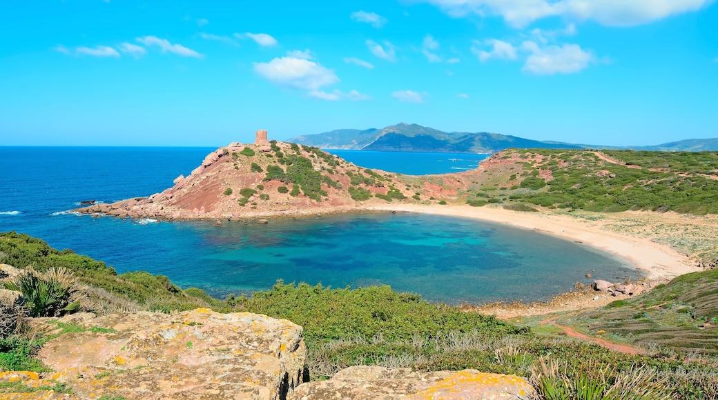 Alghero qui includes scènes tranquilles, baie ou port et vues littorales