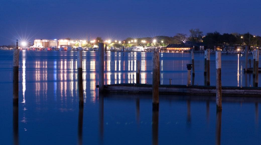 Bibione caratteristiche di paesaggio notturno e baia e porto